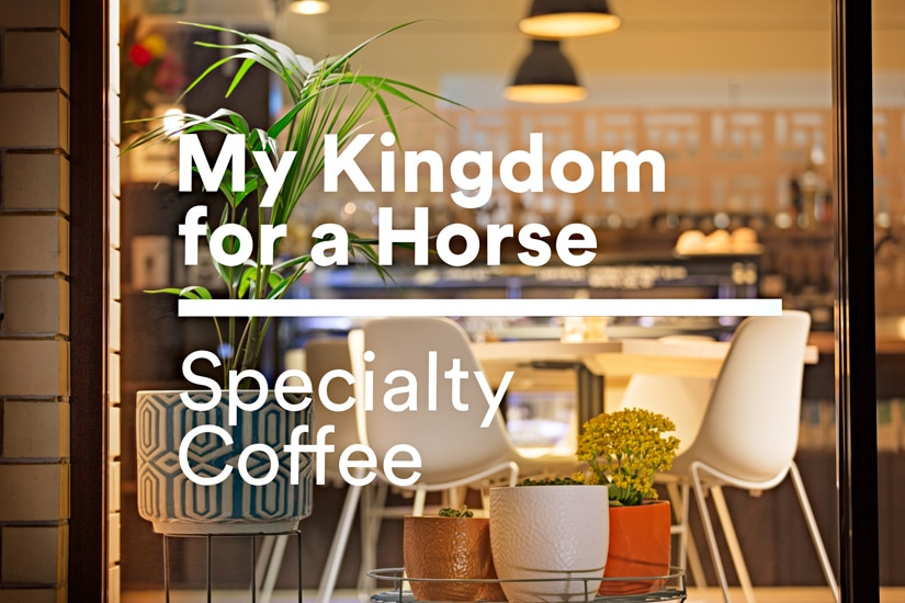 My Kingdom for a Horse Front Window Signage